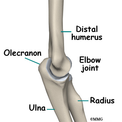 Adult Olecranon (Elbow) Fractures - Midwest Bone and Joint Institute
