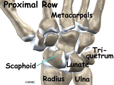 Adult Wrist Fractures Midwest Bone And Joint Institute Illinois