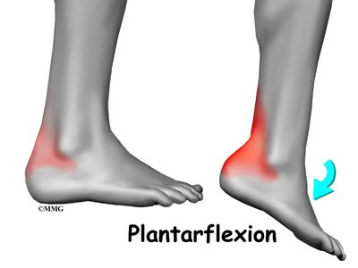 hip flexors knee pain