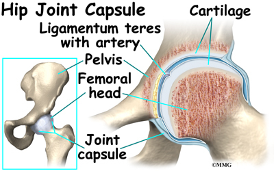 Pain in joint pelvic region and thigh icd 9 - Cobinhood