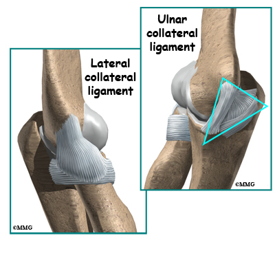 an introduction to ulnar collateral ligament injury to the elbow Physical therapy in corpus christi for elbow welcome to humpal physical therapy & sports medicine centers patient resource about ulnar collateral ligament injuries.