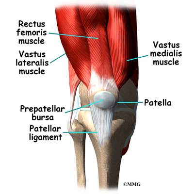 Quadriceps tendonitis orthopedic surgery algonquin il this bursa allows the kneecap to slide freely underneath the skin as we bend and straighten our knees ccuart Choice Image