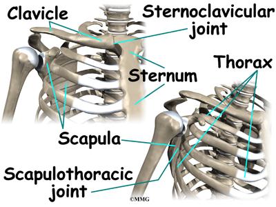 Patient Education   Concord Orthopaedics