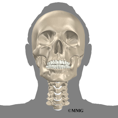 houston methodist, Human Body