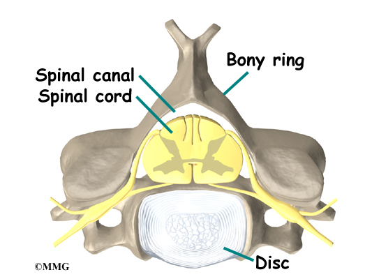 Patient Education | Concord Orthopaedics