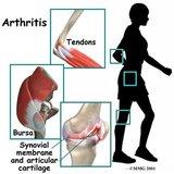 General Orthopedic Topic