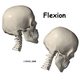 Cervical Spine Fracture