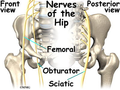 hip flexors tendonitis
