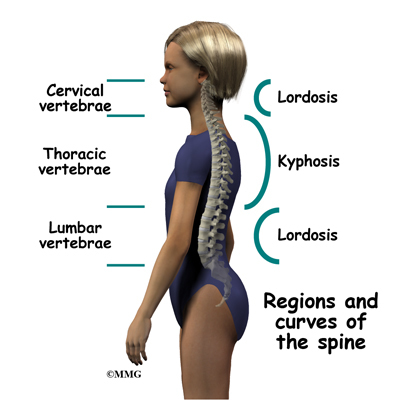 Middle Back Pain Relief Causes and.