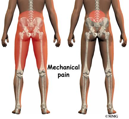back pain kidney