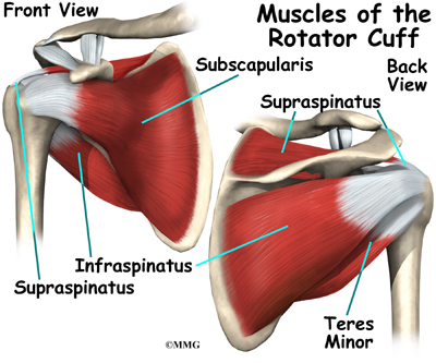 shoulder arthritis; rotator cuff tear; shoulder bursitis . in. patients...